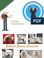 Programa Estetica Canina.pptx