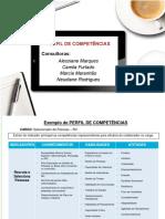 Exemplo de Perfil de Competências