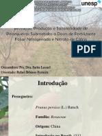 Apresentação Defesa.pdf