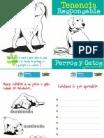 Cartilla Tenencia Responsable de Perros y Gatos Para Colorear