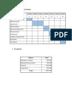 Cronograma de Actividades NIIF