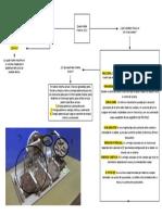 Mapa Conceptual ABP FISICA 1 - Quad marble machine - BIOLOGIA MARINA PRIMER SEMESTRE.pdf