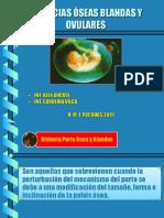 Distocias Blandas Oseas y Ovularespptx