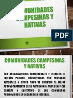 Comunidadescampesinasynativasdiapositivasok 151118161741 Lva1 App6891