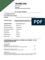 Informe Final 1174 Virgen Del Carmen - San Juan de Lurigancho
