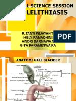 Css Cholelitiasis 2