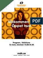 Program A4 Etuna 20190201 Web
