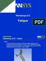 Aws90 Ws Fatigue a12