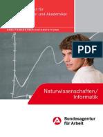 Broschuere NaWi Informatik 2012