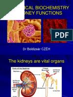10-Kidneys-2017.pdf