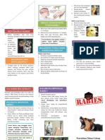 Leaflet Rabies