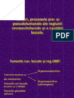 Procese Pseudotumorale Stom (1)