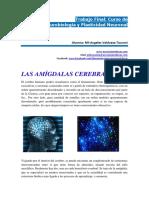 monografia-neurobiologia-maria.valdueza.tauroni.pdf