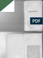 122129729-Fluxo-Floema-Fluxo.pdf