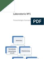 Lab 1 de Parasitos