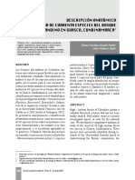 Descripcion Anatonica Especies Forestales_Revista Colombia Forestal