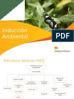 Induccion Ambiental 2013