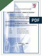 tutorial cype 2017.docx