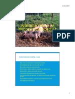 23. Producción Porcina