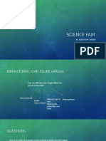 science fair vargas 2