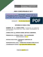 Informe de Consultoria Pancan