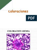 coloraciones microbiologia