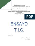 Ensayo Tic PDF