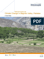 Pk Bagrot Valley