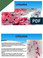 citologias