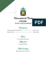 Derecho Notarial Grupal.docx