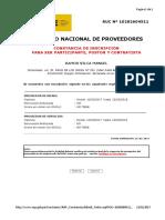 CONSTANCIA DEL RNP MANUEL.pdf