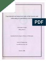 U585302.pdf