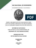 celis_cv (1).pdf