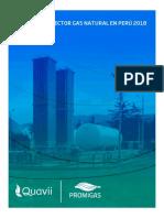 INFORME DEL SECTOR GAS NATURAL EN PERÚ 2018.pdf