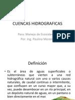 CUENCAS HIDROGRAFICAS 11 enero 2011.pptx