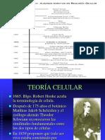 TEORIA CELULAR.pdf