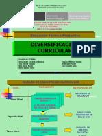 DIEVRSIFICACION CURRICULAR CETPRO.pdf