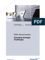 NGN Interconnection - Emerging Strategic Challenges (Detecon Executive Briefing)