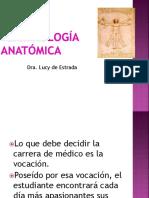 Clase Terminología Anatómica 2019