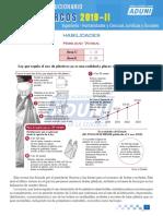 SL_UNMSM 2019-II DOMudlmQSncCnq.pdf