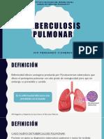 Tb Pulmonar Cisneros (1)