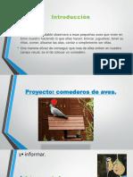 comederos de aves (3).pptx