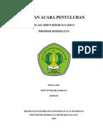 SAP PKM.docx