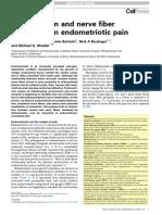 Inflammation and Nerve Fiber