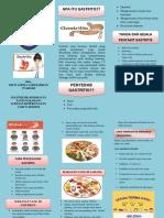 Leaflet Gatritis