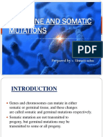 Germline and Somatic Mutations
