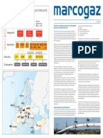 Technical Standards for Use in European NG Infrastructure, Marcogaz, Jun 2009