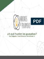 A qué huelen las Guayabas.pdf