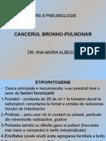 Cancerul bronho pulmonar