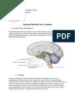 Anatomi dan Nervus Cranii (Hafizh).docx